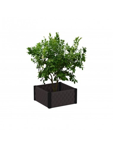Jardinera moderna cuadrada
