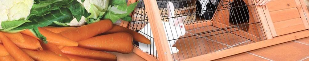 Caseta para conejos y conejeras de madera - Pepecasetas